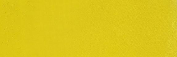 Cadmium Yellow Lemon Paint